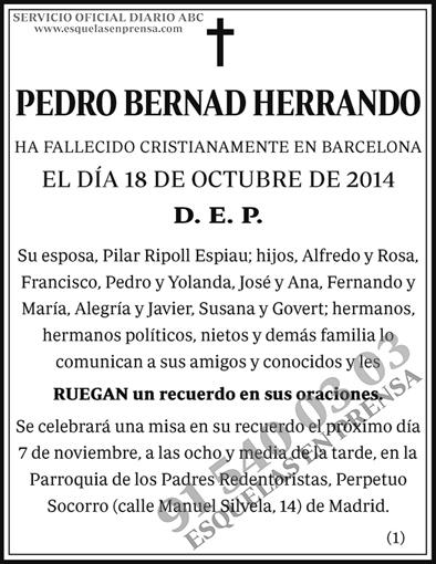 Pedro Bernad Herrando